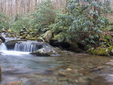 Little falls in Twin Creeks, Great Smoky Mountains National Park, 2014
